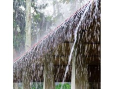 Ini  Manfaat Curah Hujan Yang Tinggi Untuk Manusia